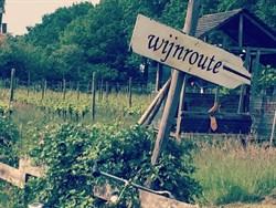 Wijnroute, Groesbeek, Wijndorp