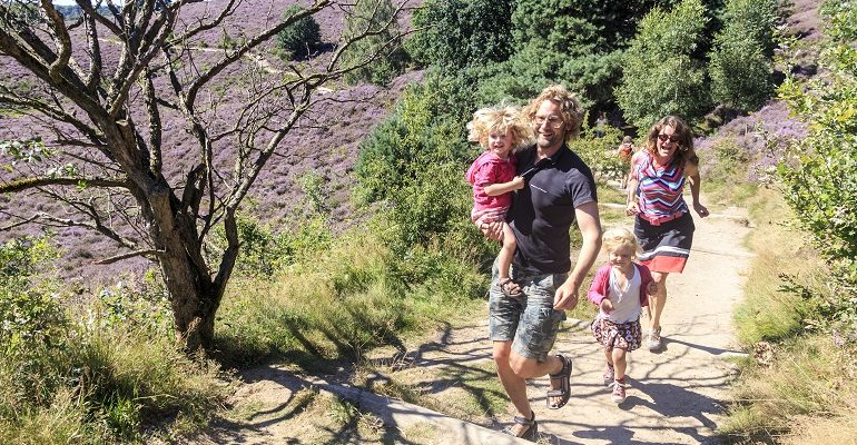 Nationaal Park 'De Veluwezoom / Posbank wandelroutes met kids