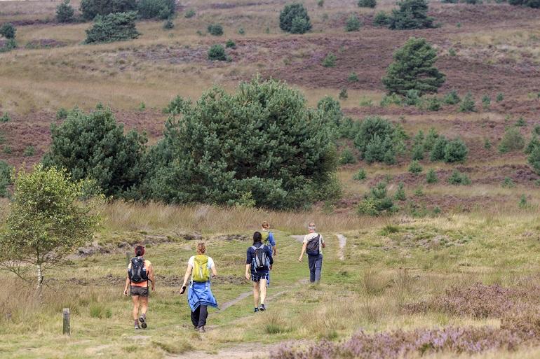 Wandelen in Nationaal Park Veluwezoom