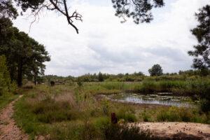 Landschappen in Gelderland